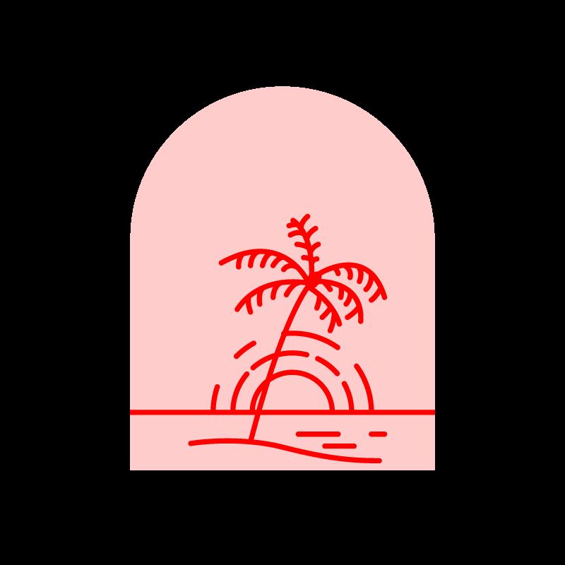 Palm2_800px